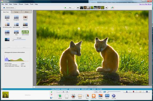Picasa Picture Editor Free Download