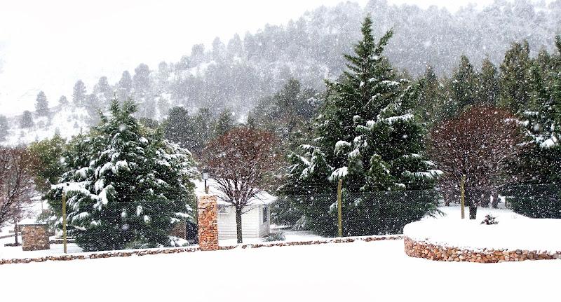 Nieve en Sierra de la Ventana DSC02293