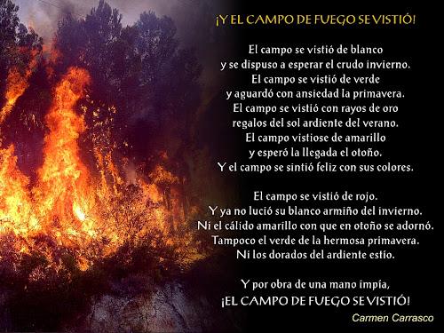 Arde Valencia