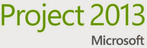 Mastering Microsoft Project 2013