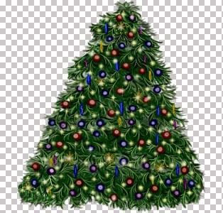 green xmas tree.jpg