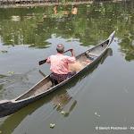 Photo de la galerie «Le Kérala et ses backwaters»