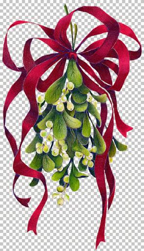 Mistletoesm~mtp.jpg