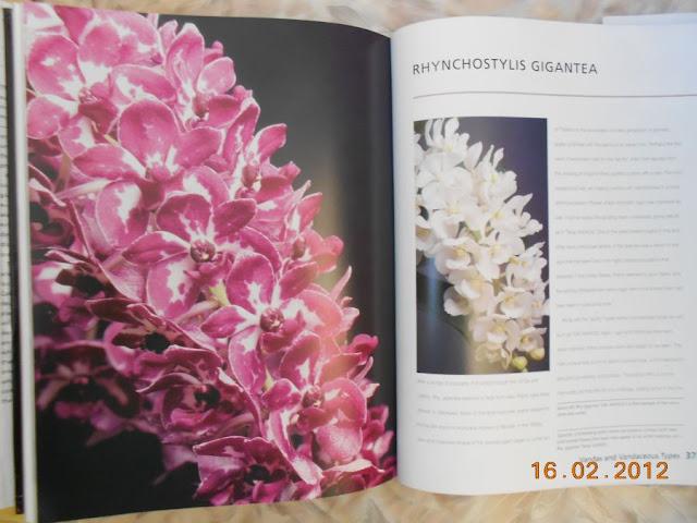 КНИГИ и ЖУРНАЛЫ наши помощники! - Страница 5 DSCN3090