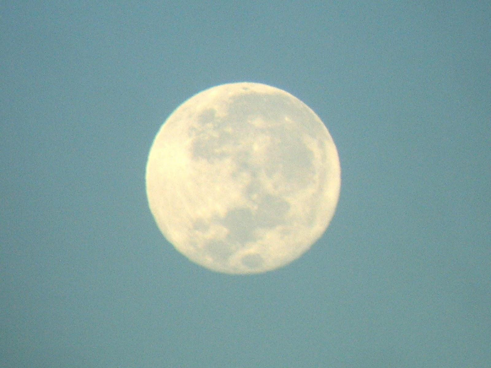 El esp ritu de contradicci n mis fotos de la luna for Hoy hay cambio de luna