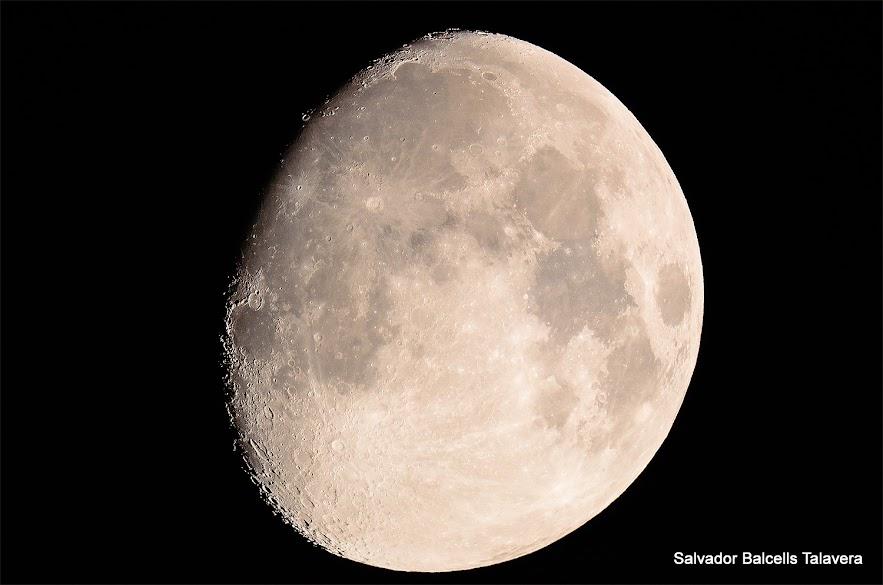 VISITANT GASSENDI A LA LLUNA Lluna+0813
