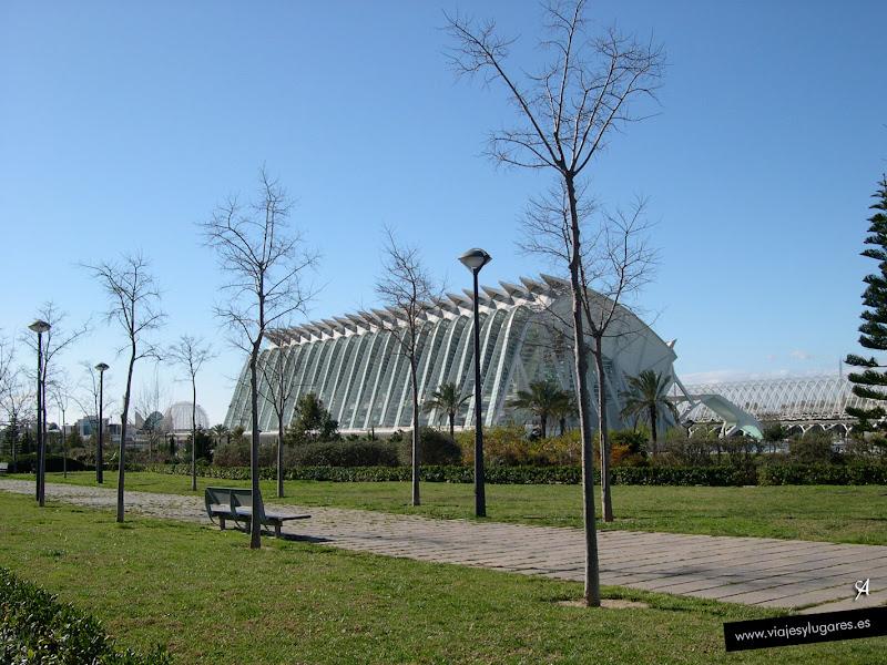 Foto del Museo Principe Felipe