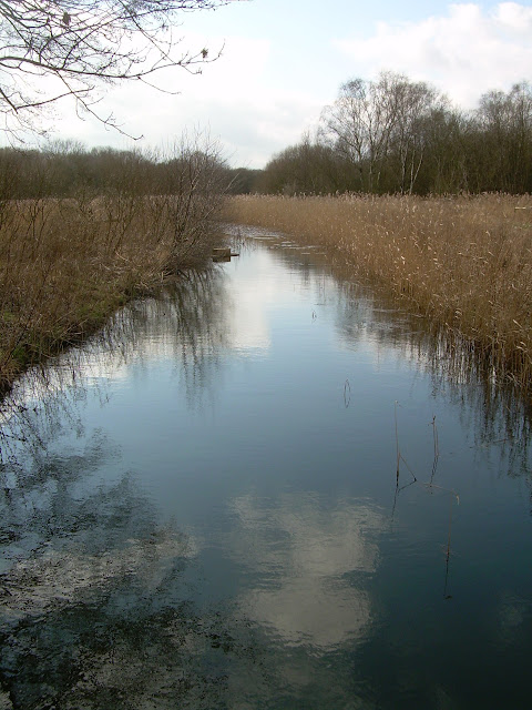 The River Waveney, Near Diss