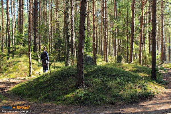 Kręgi Kamienne w Węsiorach - kurhan ze stelą