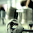 marion noiram avatar image