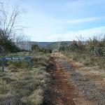 Top of Farm Ridge Trail (289384)