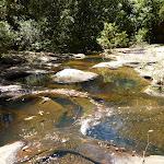 Lyrebird Gully creek (376871)