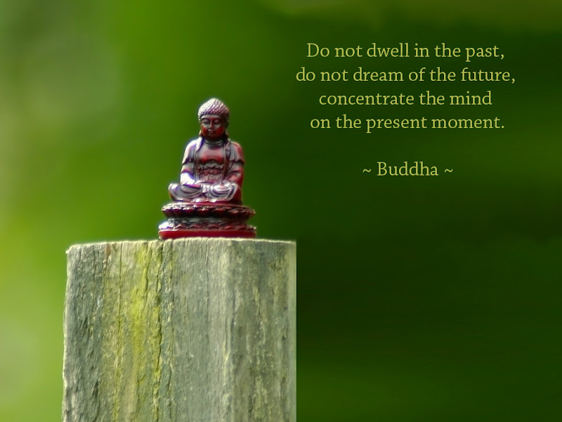 Very Best Quotes Custom The Buddha's Face  Www.thebuddhasface.co.uk The Very Best Quotes