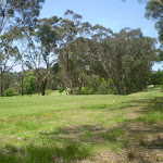 Track beside Leura Golf Course (42807)