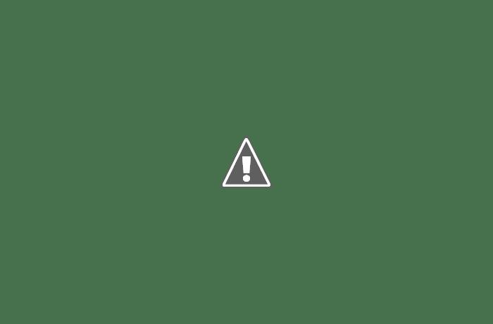 Camos rusos (en imágenes) 510_4