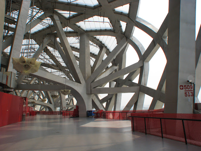 The intricate structure of the Bird's Nest (2012)