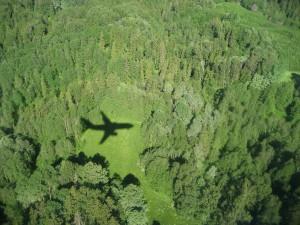 Ecotips – Evita Viajar en Avión – 332