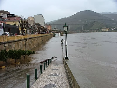 Cais da Régua ficou inundado com subida do rio Douro
