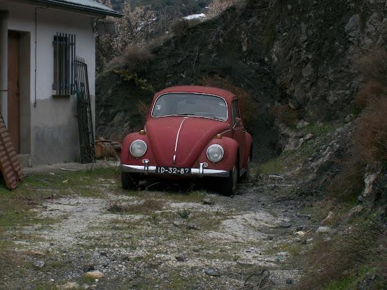 Otro cacharro mas jaja VW Carocha 100_1882