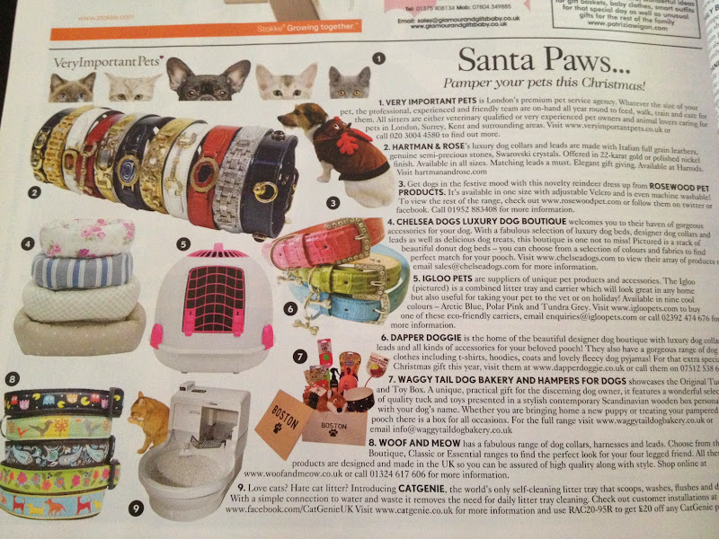Chelsea Dogs featured in Vogue Magazine December 2012 Santa Paws