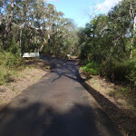 Top of the Glenbrook Gorge Track (148131)