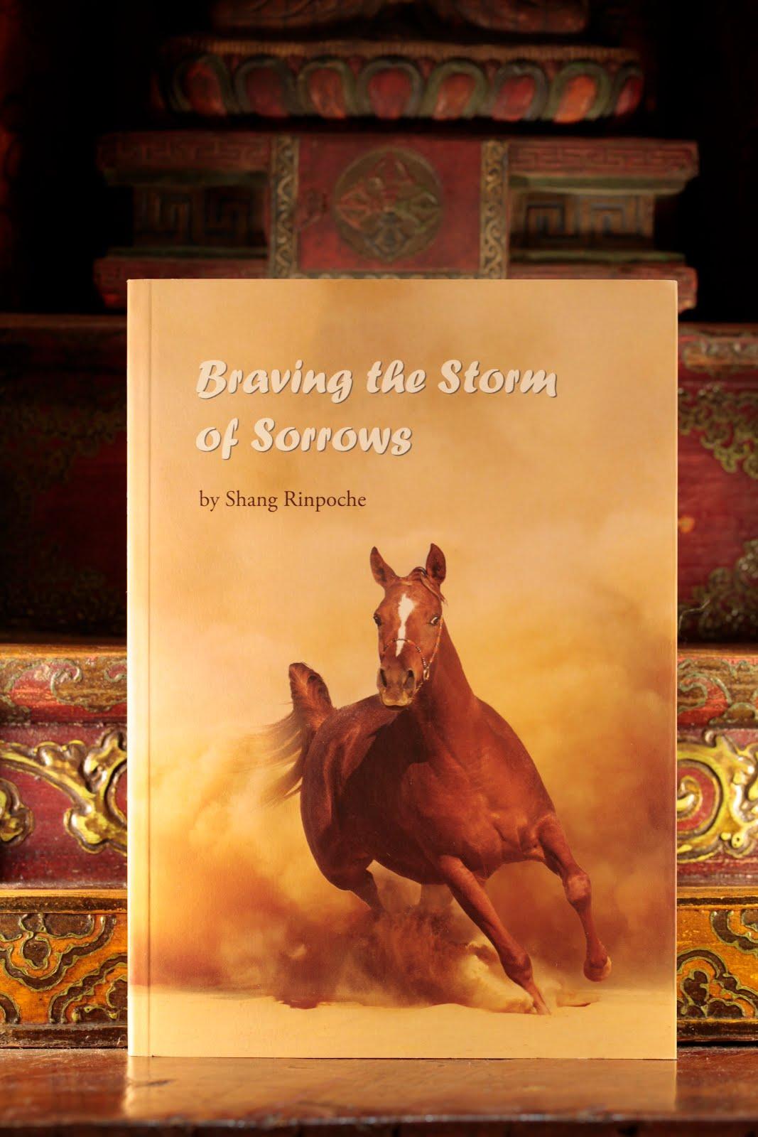 Braving the Storm of Sorrow Original.jpg