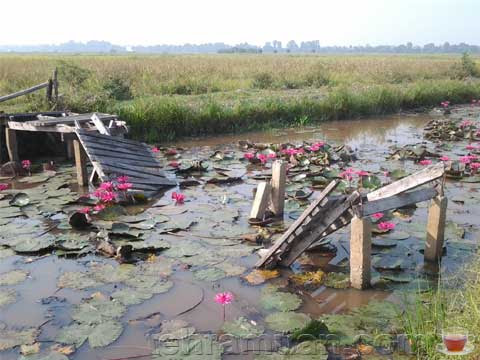 jambatan runtuh