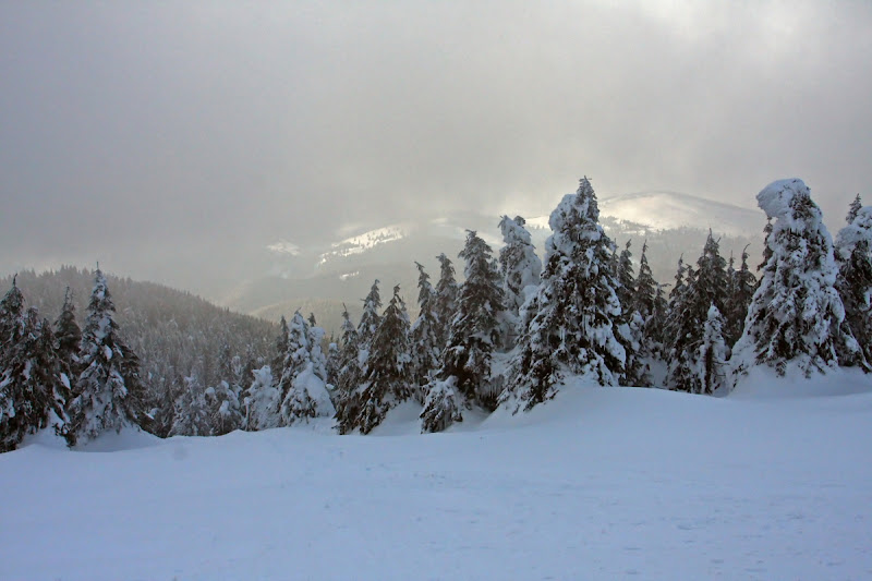 Munții Vrancei vârf zăpadă schi stație meteo brazi Covasna