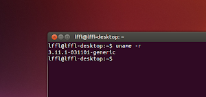 Kernel Linux 3.11.1 Ubuntu Linux