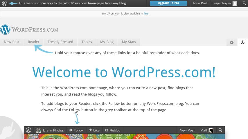 how to go rverse wordpress update