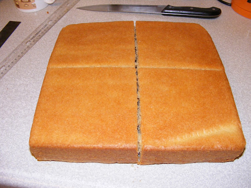 The 12 inch square cake