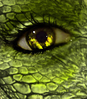 μάτι ερπετογυναίκας,ανώμαλοι,μεταλλαγμένοι,eye reptile human, perverts, mutants