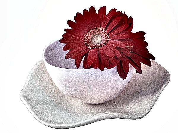 xicara com flores
