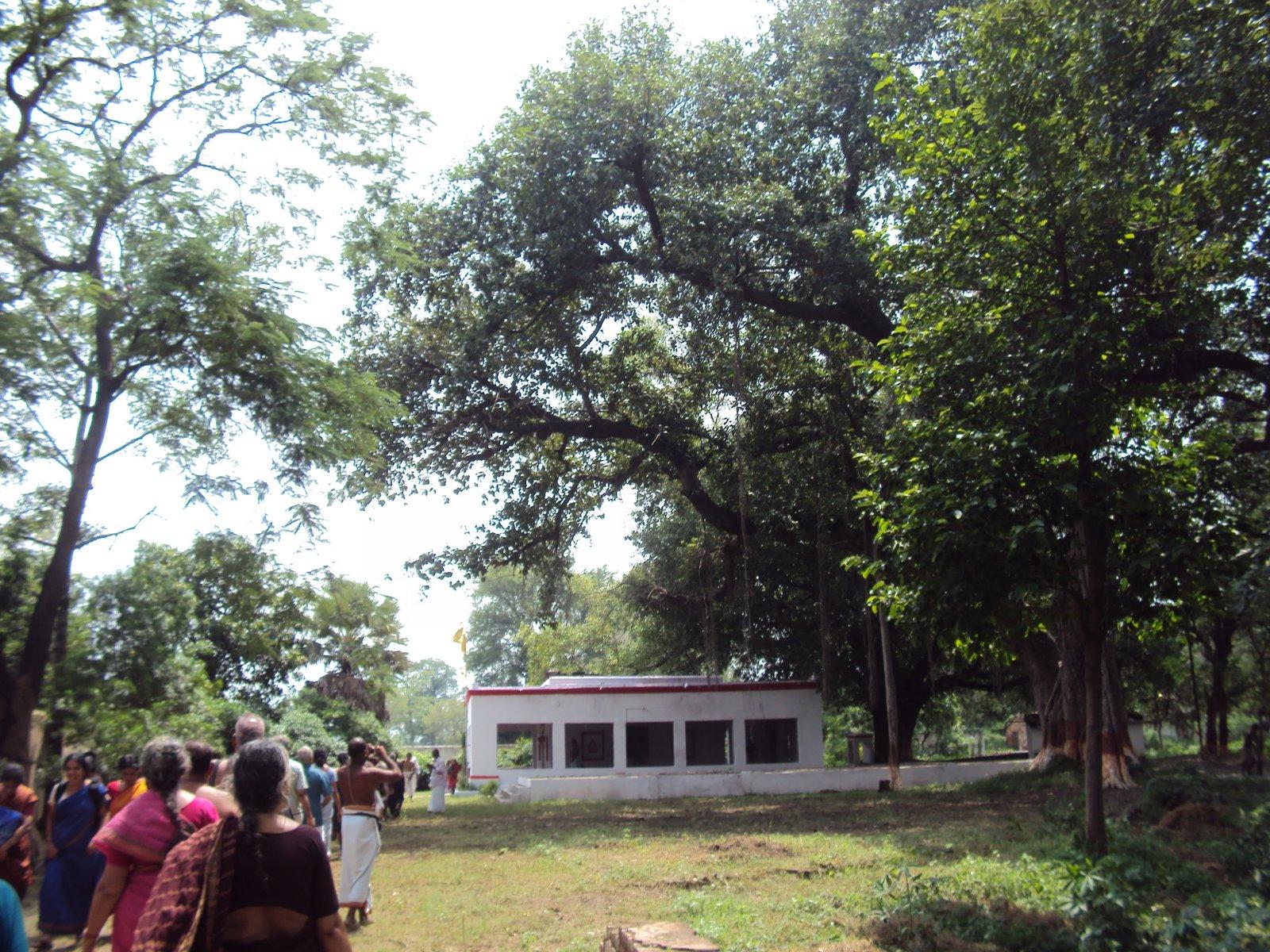 Siddha Ashram