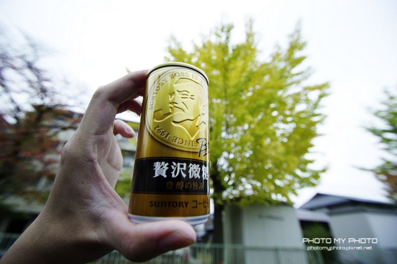 日本瘋瘋楓 PART1
