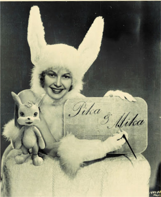 vintage fun rabbit