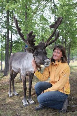 Spoznamo se s severnimi jeleni plemena Tsaatan