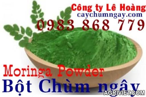Agriviet.Com-moringa_leaf_powder_1.JPG