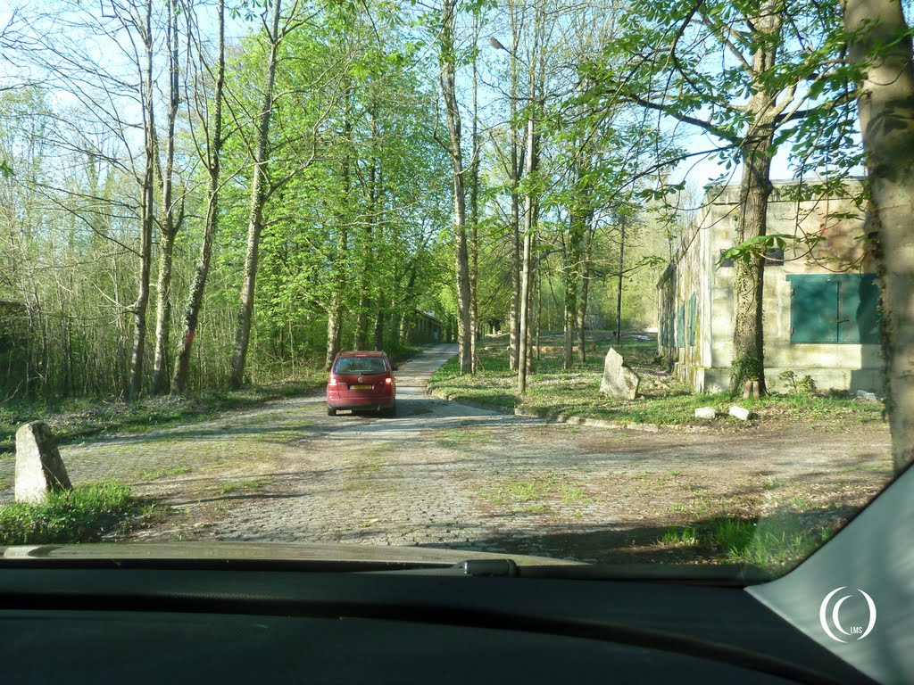 driving towards Bunker 001 of wolfsschlucht 2 at margival