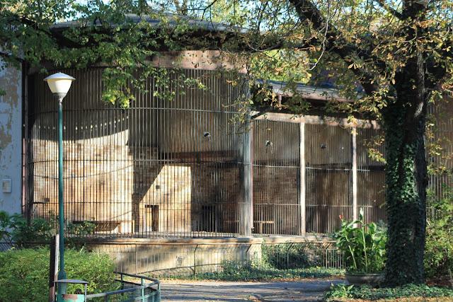Stara lwiarnia w Starym Zoo