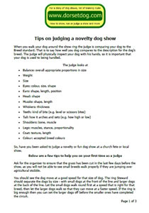 Tips on judging a novelty fun dog show