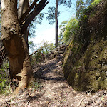 Steep track east of Heaton Gap Lookout (359141)