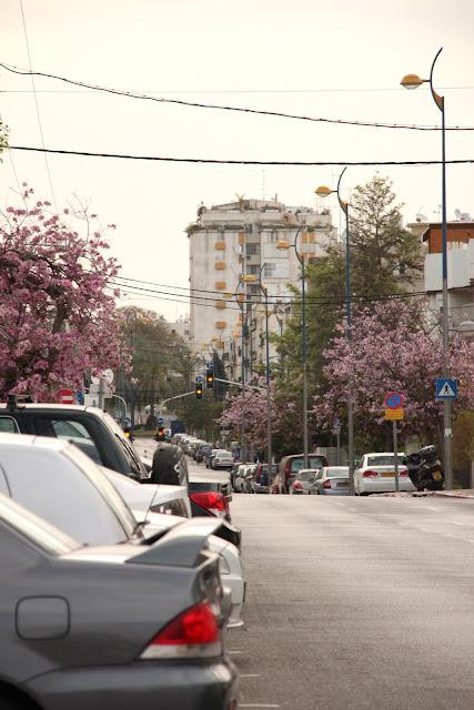 Субботняя прогулка по весеннему городу