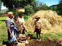 A family gathering cow manure for fertilizer - standing next to leftover rice stalks after the rice harvest.