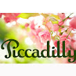 Piccadilly C