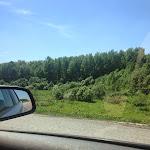 fevra1eva #лето #природа #тульскаяобласть #богородицк #дорога #м4 #трасса