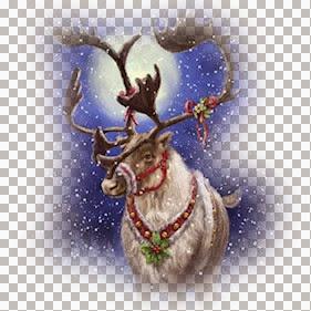 Dec Series Christmas III 12 - 2.jpg