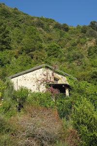 House in Cinque Terre