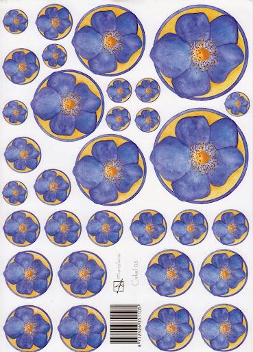 nieuw bloem blauw.jpg