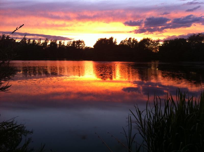 Carp fishing sunset by matt groves